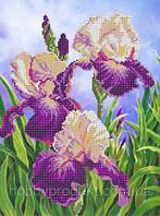 """Рисунок на ткани для вышивания бисером """"Ирисы"""", фото 1"""