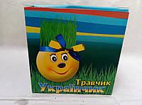 """Травянчики """"патриот Украины"""" для вашего дома и офиса"""
