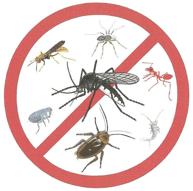 Средства против бытовых насекомых