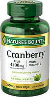 Экстракт клюквы Nature's Bounty с витамином C, 250 быстрорастворимых капсул, фото 1