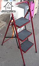 Стремянка-лестница Семейная на 3 ступени с ковриками