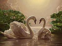 """Акриловий живопис за номерами """"Пара лебедів"""" полотно 40*50 см без коробки ТМ Ідейка"""