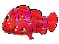 Воздушный шарик рыбка Немо 57 х 45 см.