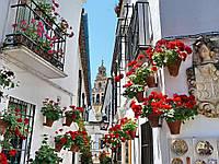 """Экскурсионный тур в Европу """"Испанская Баллада из Барселоны 11 дней"""""""