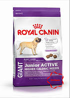 Royal canin ( Роял канін)  сухий корм для цуценят гігантських порід від 8 місяців. 15 кг