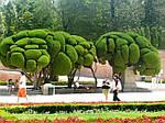 """Экскурсионный тур в Европу """"Испанская Баллада с отдыхом в Льорет де Мар 15 дней"""", фото 2"""