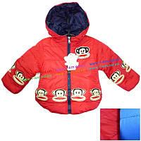 Куртка для мальчиков MiLi6.1 нейлон 3 шт (2-5 лет)