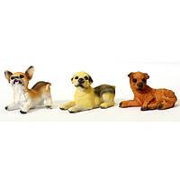 Собака сидит чихуа.лабрадор,барсик  6 см (6)