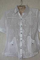 Блуза жіноча з атласним коміром, фото 1