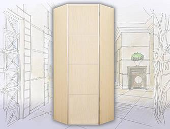Шкаф-купе угловой 1 дверный