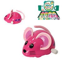 Игрушка мышка  заводная бегает  5  см (12)