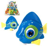 Игрушка рыба заводная  бежит мотает хвостом бегает глазами  10  см (12)