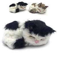 Пушистик котик клубок маленький спит 9x6 см