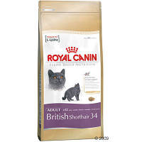 Royal Canin Kitten British Shorthair для котят британской короткошерстной до 12 месяцев