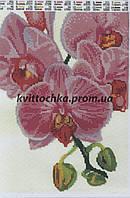 """Схема для вышивания бисером """"Орхидея"""""""