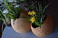 Пасхальные яйца:  пасхальный декор своими руками