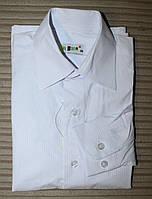Рубашка белая приталенная для мальчика.