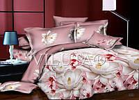 Полуторный набор постельного белья Ранфорс platinum №9946