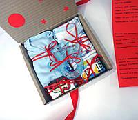 Подарочный набор для мальчика 3-6 мес MiniMe