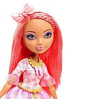 Сидар Вуд оригинальная шарнирная кукла из серии День Рождения Эвер Афтер Хай, Ever After High Cedar Wood