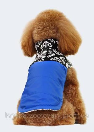 """Куртка """"Стрит Стайл"""", синий, размер XL  36/54см для собак и щенков, фото 2"""