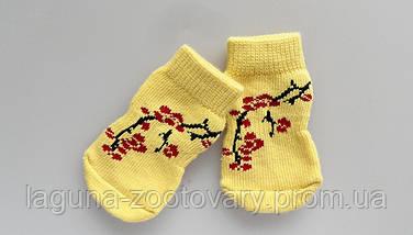 Носки для животных , фото 3