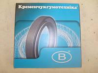 Сальники коленчатого вала Москвич, фото 1