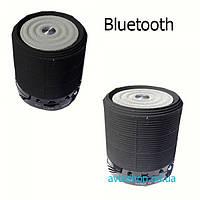 Портативная колонка WS-631 BlueTooth