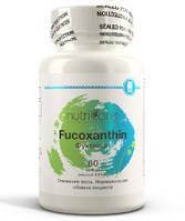 Фукоксан США Арго для щитовидной железы, сердца, сосудов, зоб, аллергия, похудение, иммунитет, детоксикация