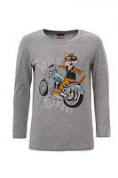 Реглан, футболка длинный рукав для мальчиков. ТМ Glo-story Венгрия рост 98 104 110