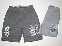 Детские шорты для мальчика на 2 - 6 лет