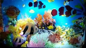 Детские ночники аквариумы и проэкторы звездное небо star-master