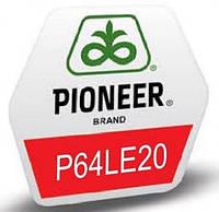 Подсолнух PIONEER P64LE20