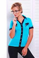 Классическая рубашка на пуговицах (4 расцветки )