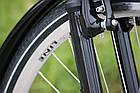 Міський велосипед LAVIDA 28 Nexus 3 Chocolate, фото 7