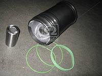 Гильзо-комплект (7511.1004006-10-90) ЯМЗ ЕВРО-2, (Г(фосф.)( П(фосф.) с рас+кольца+пал.+уплот.) гр.Б ЭКСПЕРТ (М