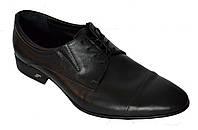 Туфли мужские классические из натуральной кожи на шнуровке