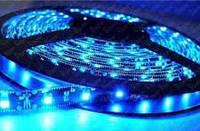 Светодиодная лента LED 5050 B 60 LED (100), BLUE, 5 метров, 12V