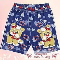 Летние шорты с собачкой для девочек от 3 до 7 лет Турция (5139)
