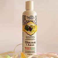 Шампунь на основе амлы и мыльного ореха Шикакай от Триюга, 250 мл. Уменьшает выпадение волос