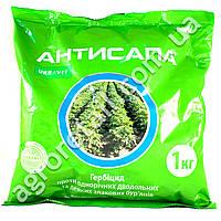Антисапа 1 кг