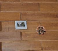 Панели декоративные дуб
