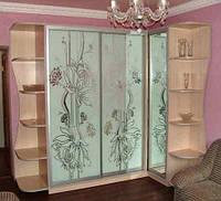 Шкафы-купе с пескоструйным рисунком  на зеркале.