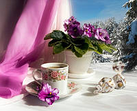 Набор алмазной вышивки KLN Вкусное чаепитие 30 х 40 см (арт. FS462)