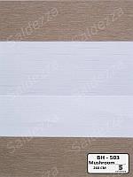 Рулонные шторы День-Ночь ЕКО (открытого типа)  - BH-503