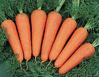 Морковь Канада F1 (Фасовка: 5 г)
