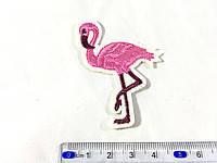 Нашивка фламинго