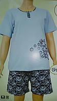 Увеличенная пижама  с шортами ,Николетта
