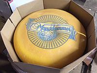 "Сыр ""Maasdamer Ondulino"""