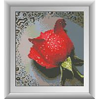 Роса на красной розе. Dream Art. Набор алмазной живописи (квадратные, полная) (68038) (7290)